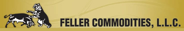 logo_wide2